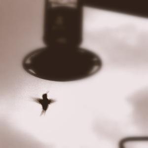 Hummingbird2